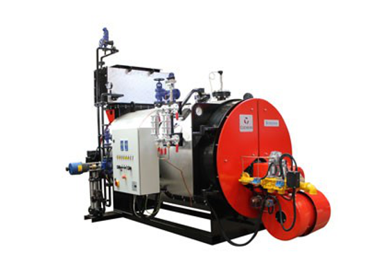 Borderer Steam Boiler Ireland | Comprehensive range of Steam Boilers from Euro Gas